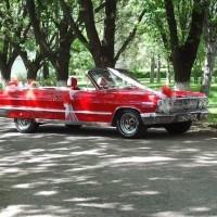 Klasik Düğün Arabası Modelleri 200x200 2014 Farklı Düğün Arabası Modelleri