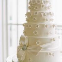 5 Katlı Düğün Pastası Modelleri 200x200 Katlı Düğün Pastası Modelleri