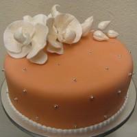 nisan pastasi modelleri 4 200x200 Nişan Pastası İçin Fikirler