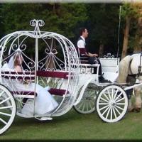 dugun arabasi fikirleri 3 200x200 Düğün Arabası Fikirleri